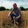 Cover crops – the solution to healthy soils?